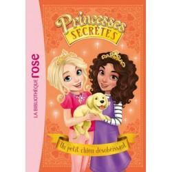 Princesses secrètes 05 - Un...