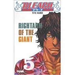 Rightarm of the Giant Tome...