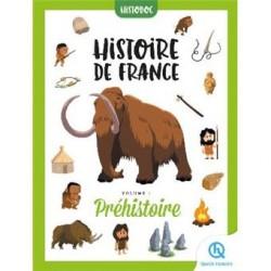 Histoire de France - Tome 1