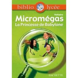 Micromégas - la princesse...